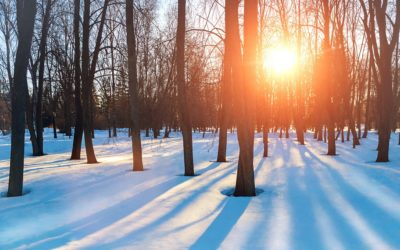 Winter Will Bring a Flurry of Activity to theRCFEHousing Market.